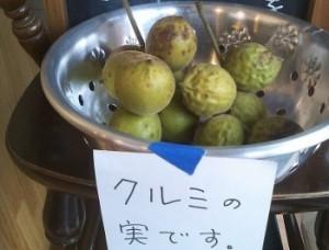 kuruminomi